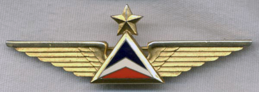 1970s Delta Airlines Pilot Wing